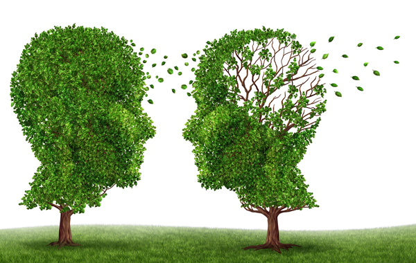 The Caregiver's Guide to Alzheimer's